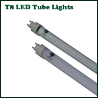 LED T8 LED Tube Lamps